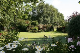 Ballyrobert Cottage Garden & Nursery